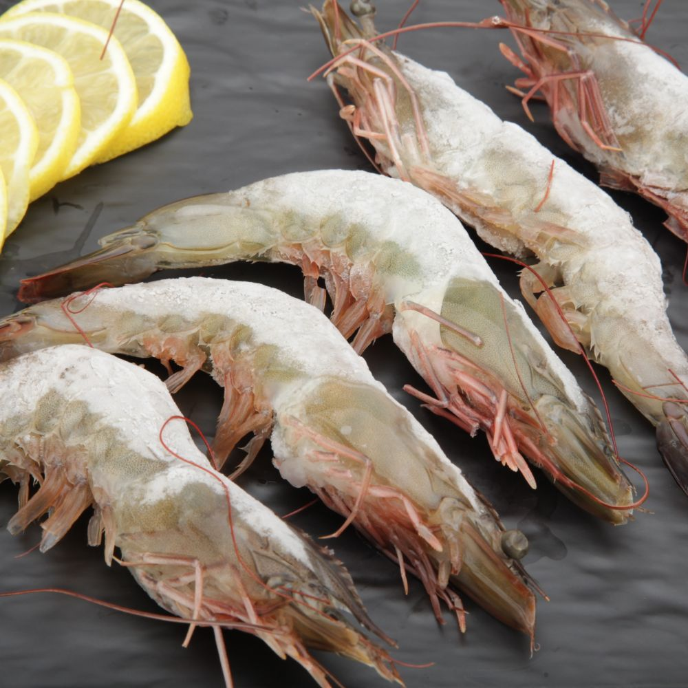 Frozen Fish and Prawn